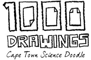Cape Town Science Doodle