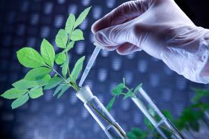 discover bioscience