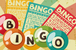 Bingo Web Blokkie